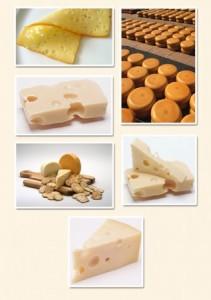 Так какой же сыр предпочесть? По вкусу