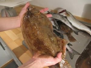 Как сохранить рыбу для длительного хранения