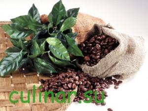 Вьетнамские кофейные сорта – арабика
