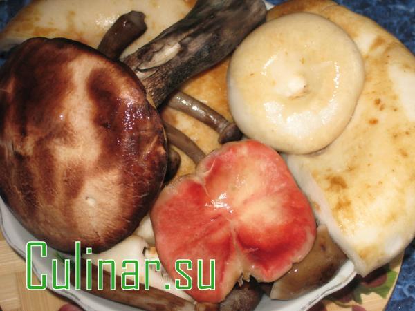 Суп грибной на обед