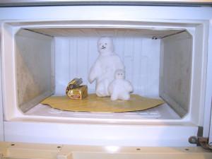 Хранение в морозильных камерах